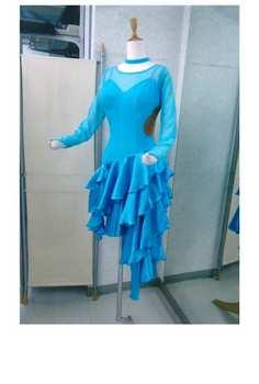準正装ラテンドレス画像 白樺ドレス