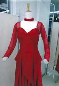 ドレスに変身 トップスGT2005画像 白樺ドレス